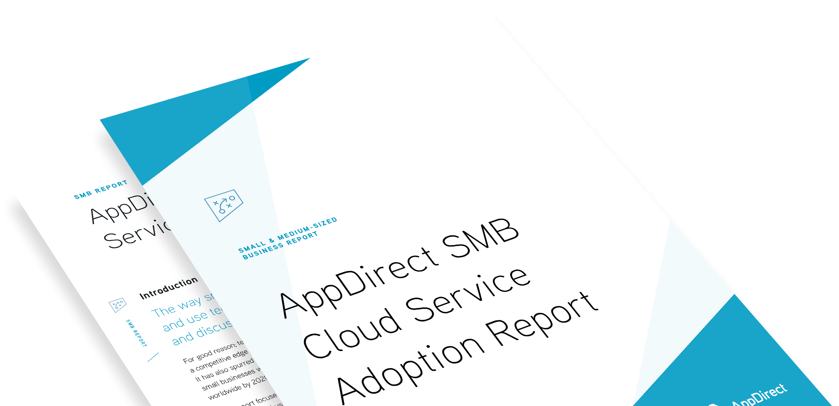 SMB Cloud Service Adoption Survey Report