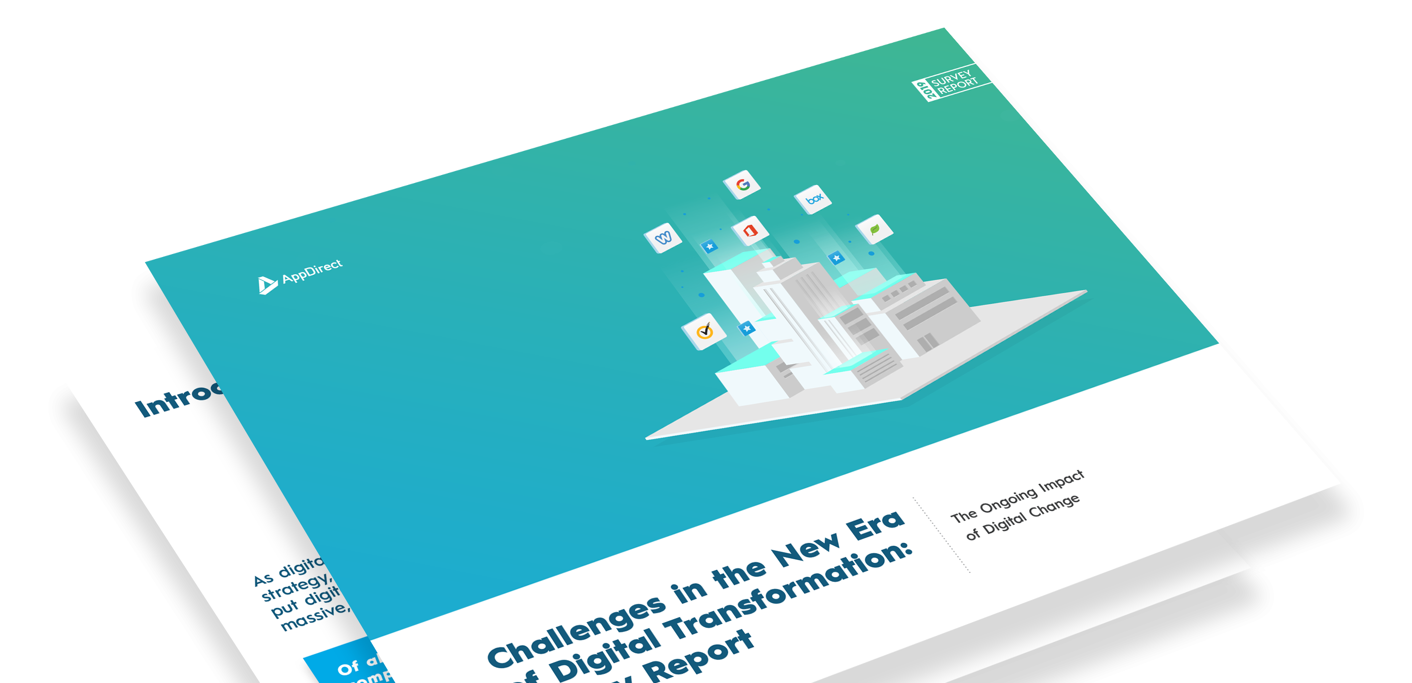 Challenges in the Era of Digital Transformation: Survey Report
