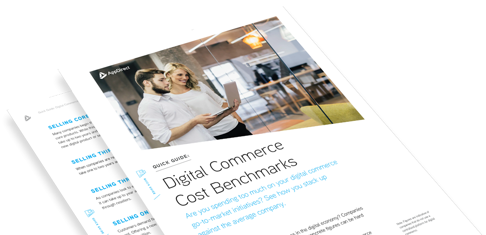 Digital Commerce Cost Benchmarks