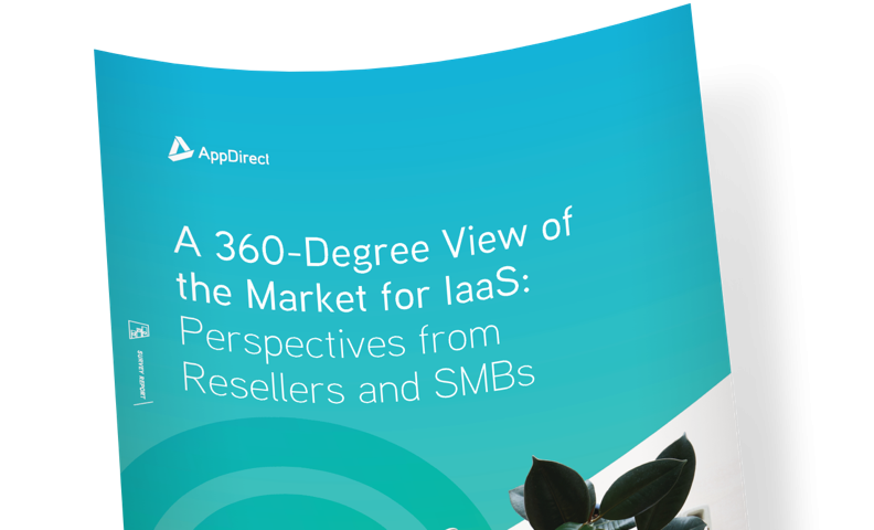 Survey Report: A 360-Degree View of the Market for IaaS